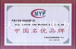 中国名优品牌-大吕电力