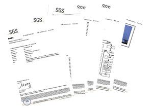 大吕电力SGS测试报告7-16