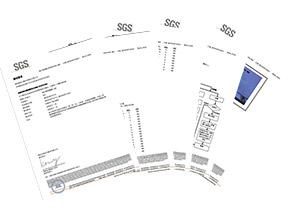 大吕电力SGS报告