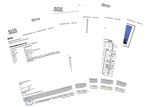 大吕电力SGS测试报告7-23