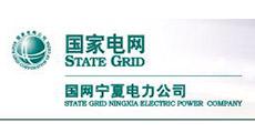 国家电网宁夏电力公司-大吕电力VIP客户