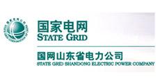 国家电网山东省电力公司-大吕电力VIP客户